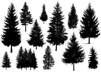 Set. Silhouette of pine trees. Wall mural