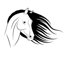 Силуэт головы лошади, логотип