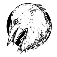 Beautiful emblem with bird head. Graphic, dark, stylish. Hand drawn illustration with raven. It can be used as an idea for a tattoo and printing on the T-shirts.