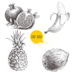 Hand drawn sketch style tropical fruits set isolated on white background. Banana, coconut, pineapple and pomegranates with seeds. Tropical fruits drawing.
