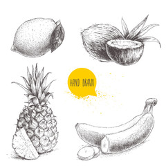 Hand drawn sketch style tropical fruits set isolated on white background. Bananas, coconuts, pineapple with slice and lemon with leaf.