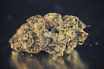 Single nug over dark background - Medical marijuana concept