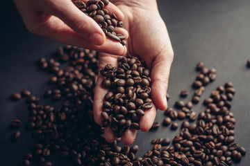Coffee grains in hands and on a gray background