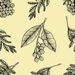 Rowan berry floral botany seamless pattern