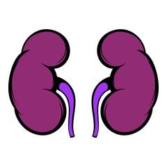 Human kidney icon, icon cartoon