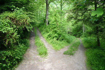 Choosing the High Road or Low Road