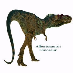 Albertosaurus Dinosaur Tail with Font - Albertosaurus was a carnivorous theropod dinosaur that lived in North America in the Cretaceous Period.