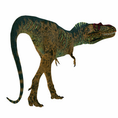 Albertosaurus Dinosaur Tail - Albertosaurus was a carnivorous theropod dinosaur that lived in North America in the Cretaceous Period.