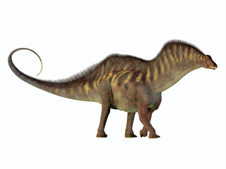 Amargasaurus Side Profile - Amargasaurus was a herbivorous sauropod dinosaur that lived in Argentina in the Cretaceous Period.