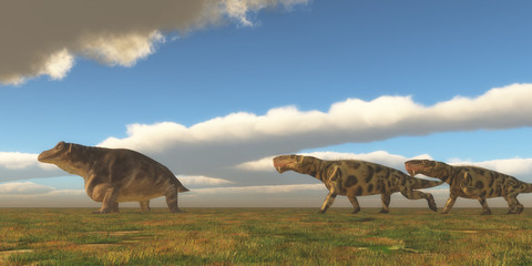Permian Inostrancevia hunts Keratocephalus - Two Inostrancevia dinosaurs go after a Keratocephalus on a grassy plain in the Permian Period.