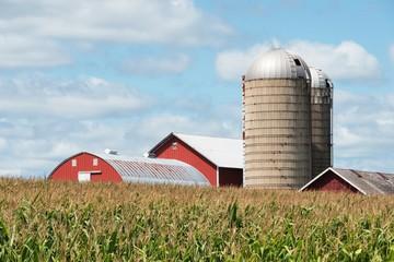 Farm over Cornfield