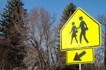 School crossing sign in front of trees in Colorado