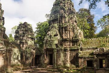 Ta Prohm temple in Angkor near Siem Reap in Cambodia
