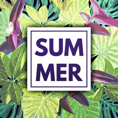 Summer tropical background with green palm leaves and exotic plants. Jungle vector floral template.