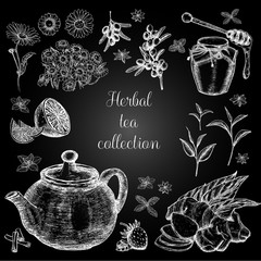 Hand drawn herbal tea collection. Freehand drawing with imitation of chalk sketch.