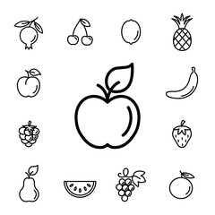 apple fruit with leaf line icons set black on white