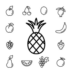 pineapple fruit with leaf line icons set black on white