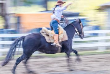 Amazona e seu cavalo.