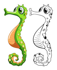Animal outline for seahorse