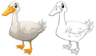 Animal doodle outline for duck