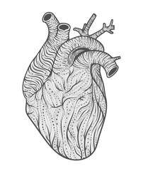 Human heart line art. Vector illustration. Tattoo style