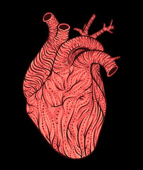 Human heart line art. Vector illustration. Tattoo style