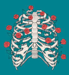 Illustration of human rib cage with roses. Line art style. Boho vector