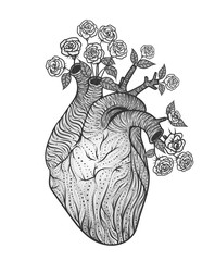 Human heart with flowers. Vector illustration. Tattoo style