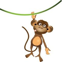 Monkey cartoon looks