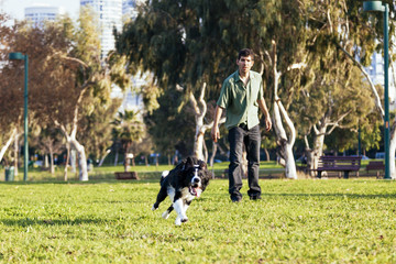 Dog Fetching in the Park