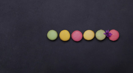 colorful macaron, tasty cookies on grey background with flower