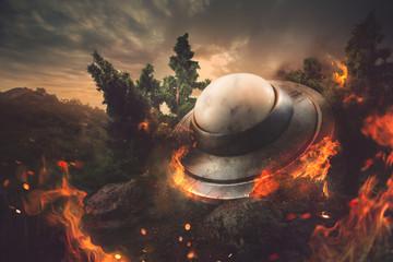 Garden Poster UFO burning crashed UFO in a forest at dusk
