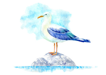 Seagull on a stone. Marine landscape. Watercolor hand drawn illustration. White background.