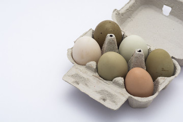 colored eggs in a box