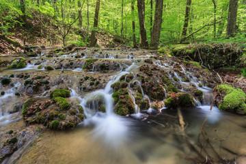 Beusnita river, Romania