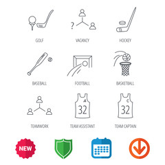 Football, ice hockey and baseball icons. Basketball, team assistant and captain linear signs. Teamwork, vacancy and golf icons. New tag, shield and calendar web icons. Download arrow. Vector