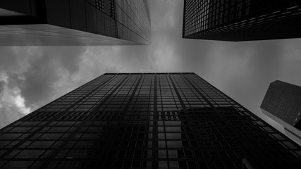 Bottom view at skyscrapers in black and white