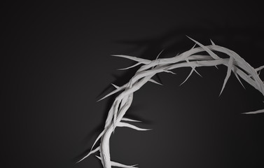 Close up Crown of Thorns 3D Rendering Empty Space Dark Background