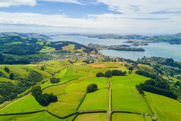 Poster Hill Aerial Dunedin Town and Otago Bay, New Zealand