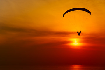 Photo sur Toile Aerien Paraglider silhouette against the background of the sunset sky