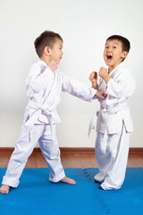 Two boys girls demonstrate martial arts working together