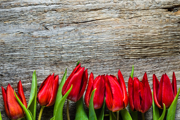 Red tulips, spring background, mothers day card