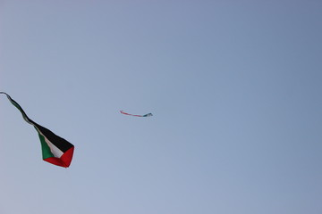 UAE kites in air