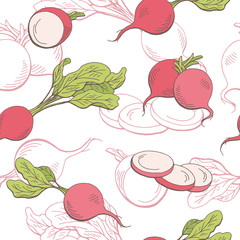 Radish graphic vegetable color seamless pattern sketch illustration vector