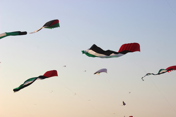 UAE kites in air