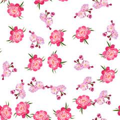 illustration of peony flower