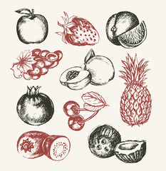Fruits - vector modern hand drawn design illustrative set.