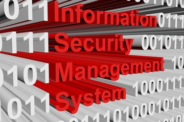 Information security management system in the form of binary code, 3D illustration