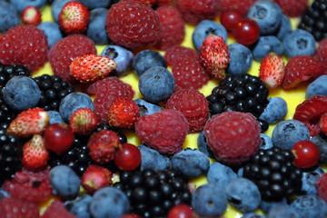 Berries. More. Raspberries. Blueberries. Wild strawberries. Fruit tart. Red Fruit