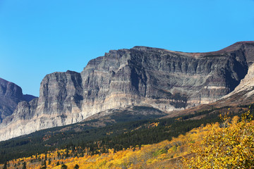 Wall Mural - Mountainside and Fall Colors in Glacier National Park